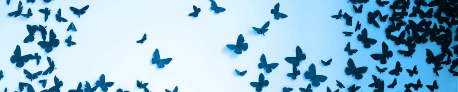 Blackbutterflies